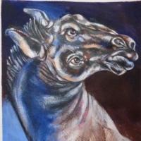 matthieu-kuhn-horse-head